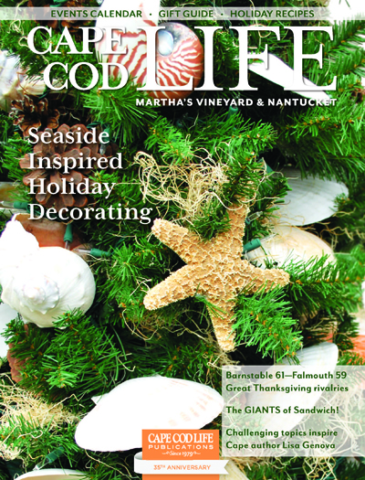 Vu Design was featured in Cape Cod Life Magazine's November-December 2014 issue.